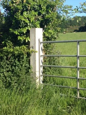 Gate Post Ballybrennan